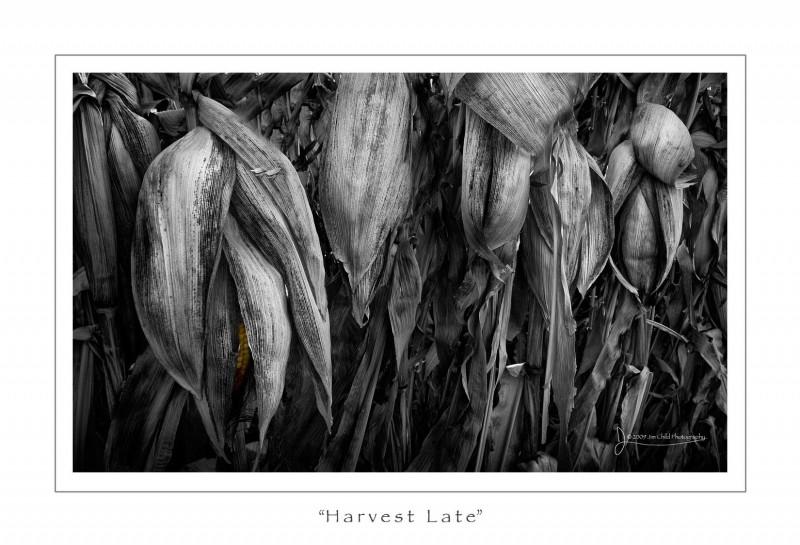 Harvestlate