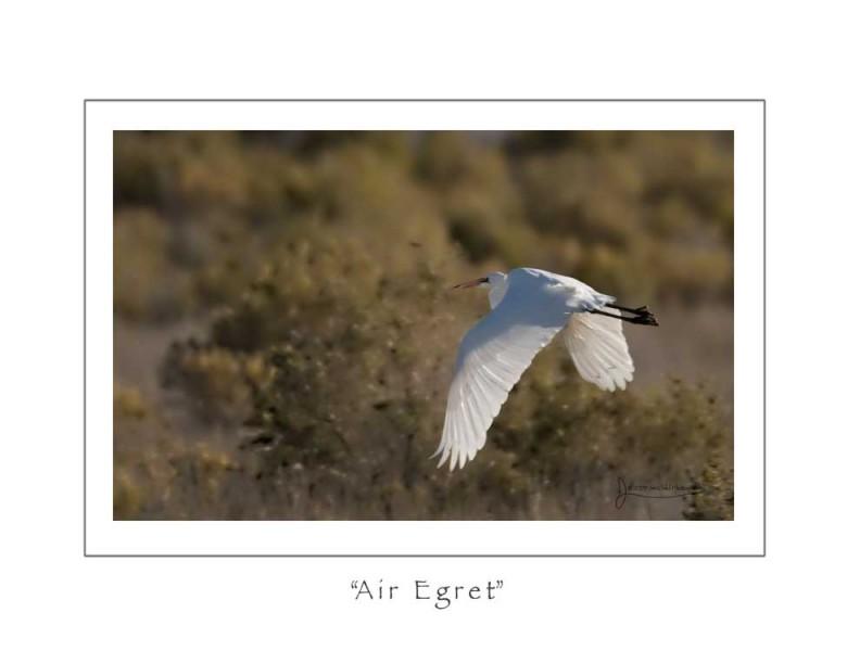 airegret