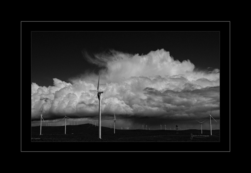 washingtonwindfarm
