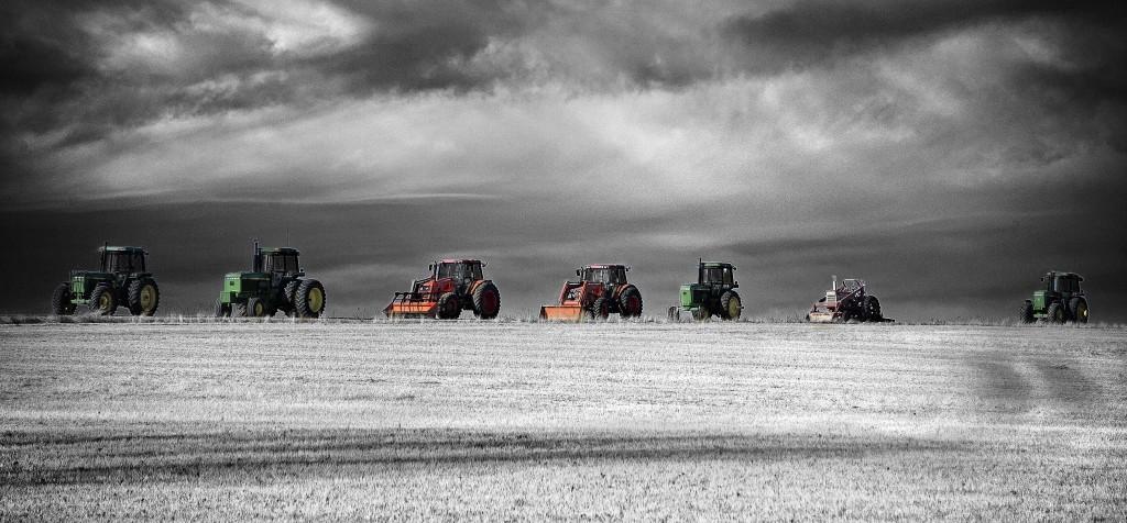 Farm line up