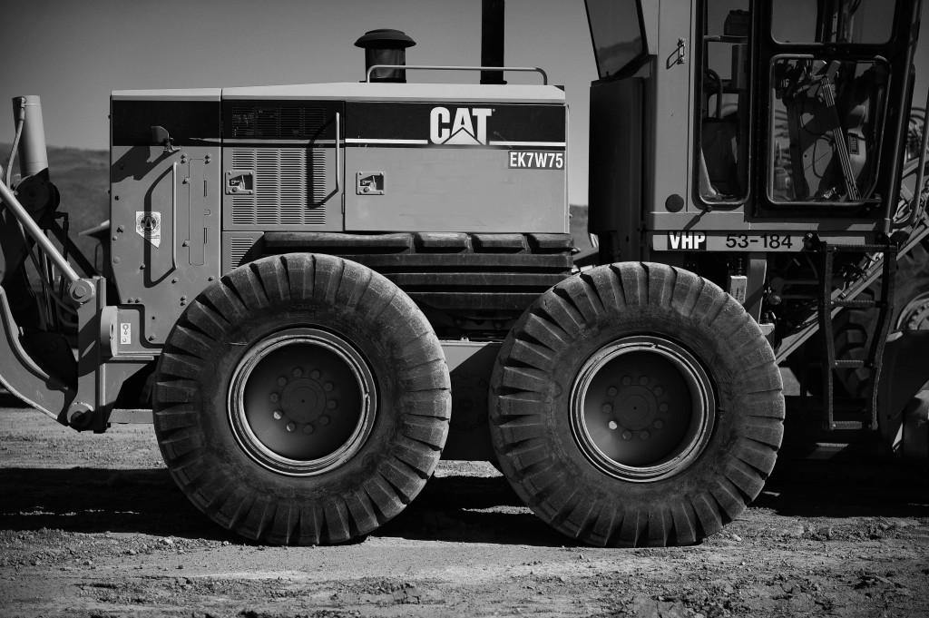 Catgrader
