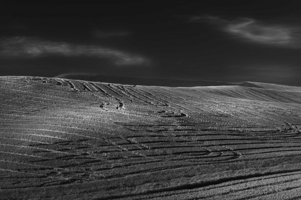 Cheney hill Black and White