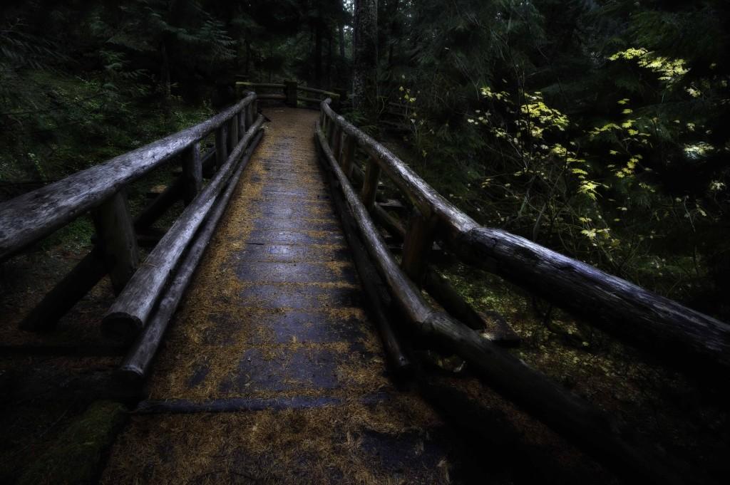 Oregon Walkway